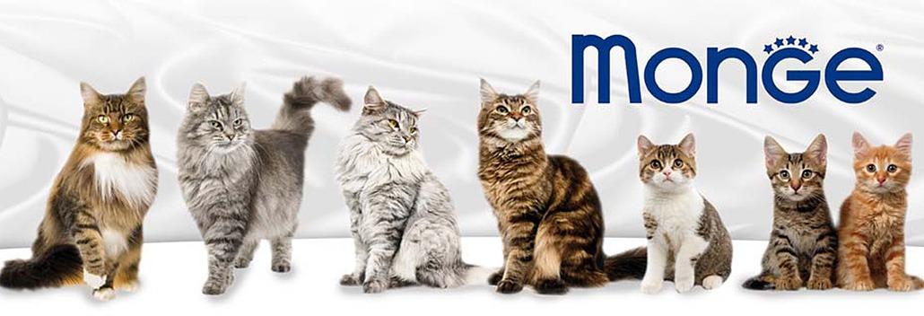 кошачьи корма Monge