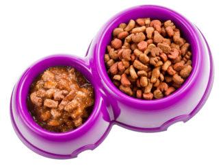 корм для кошек (кошачья еда)